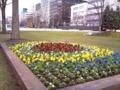 20100423_大通公園