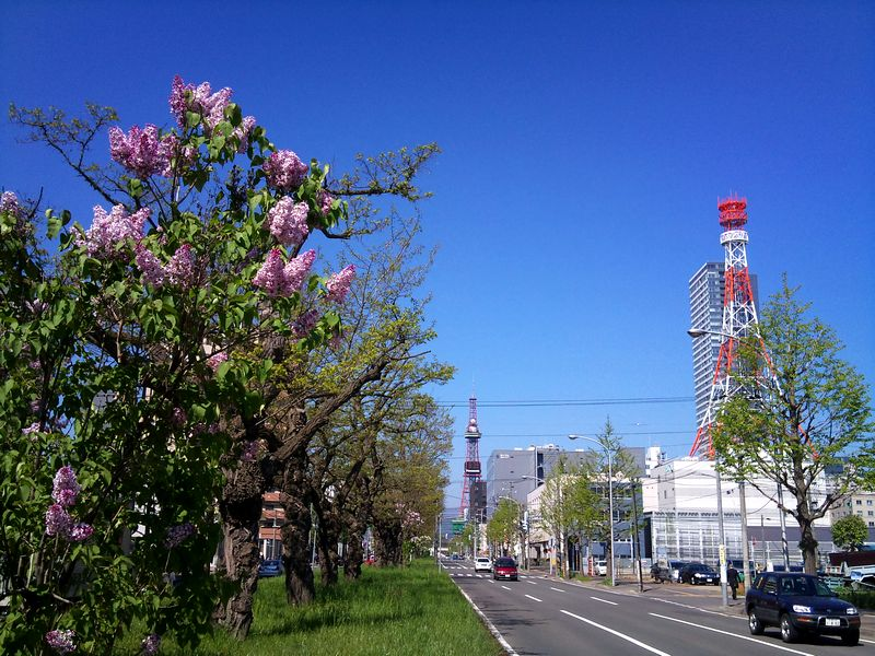 20100531_バスセンター前