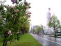 20100604_バスセンター前
