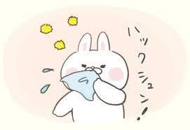 f:id:mitsuami2106:20200503073147j:plain