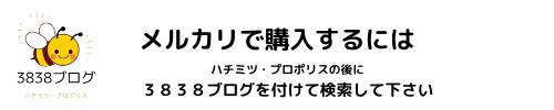 f:id:mitsubachi38:20210321072029p:plain