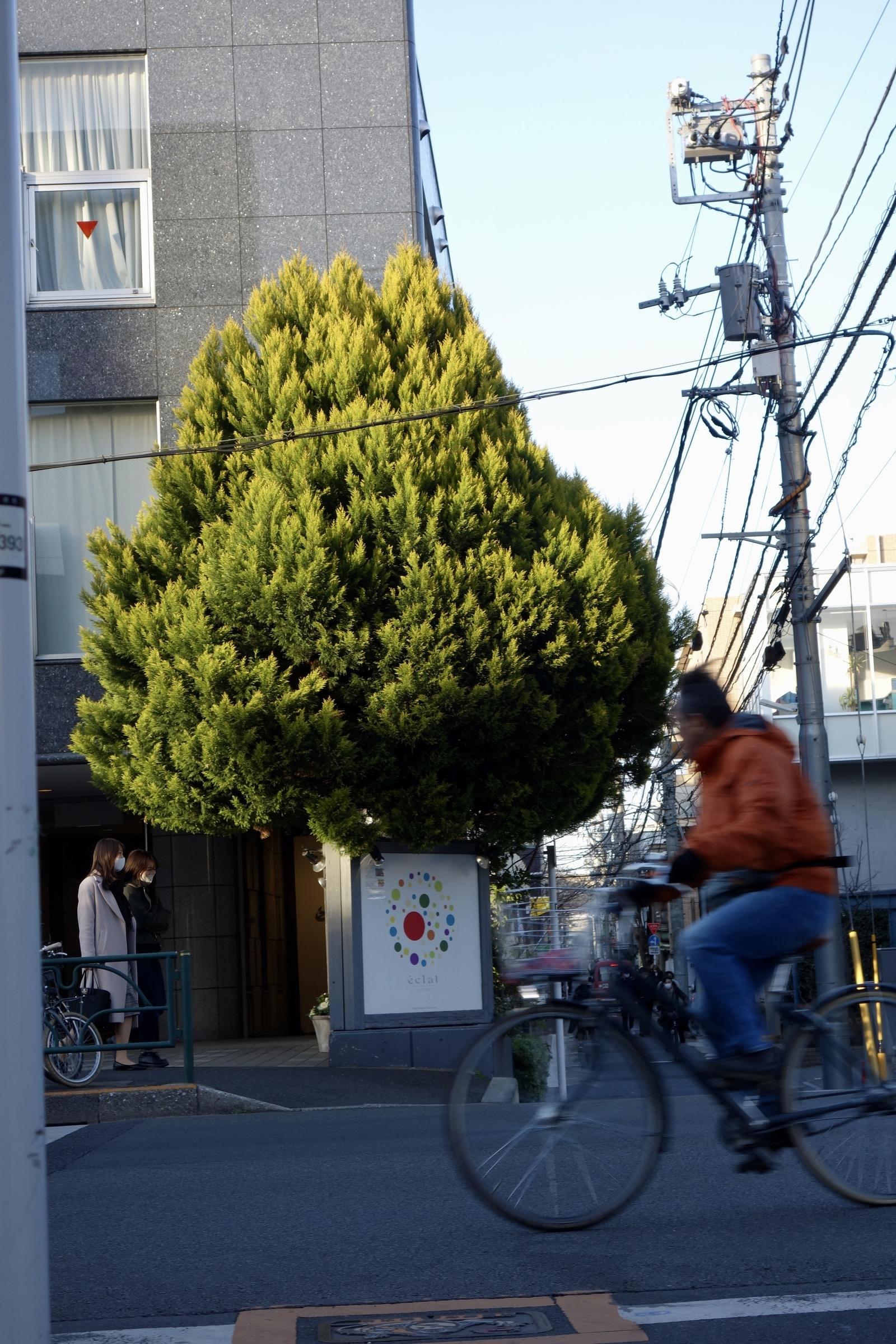 f:id:mitsueyou:20210224212213j:plain