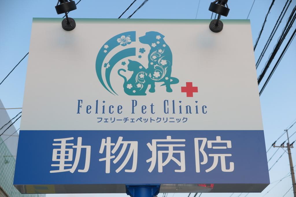 f:id:mitsuhiro-yoshida:20180220234051j:plain
