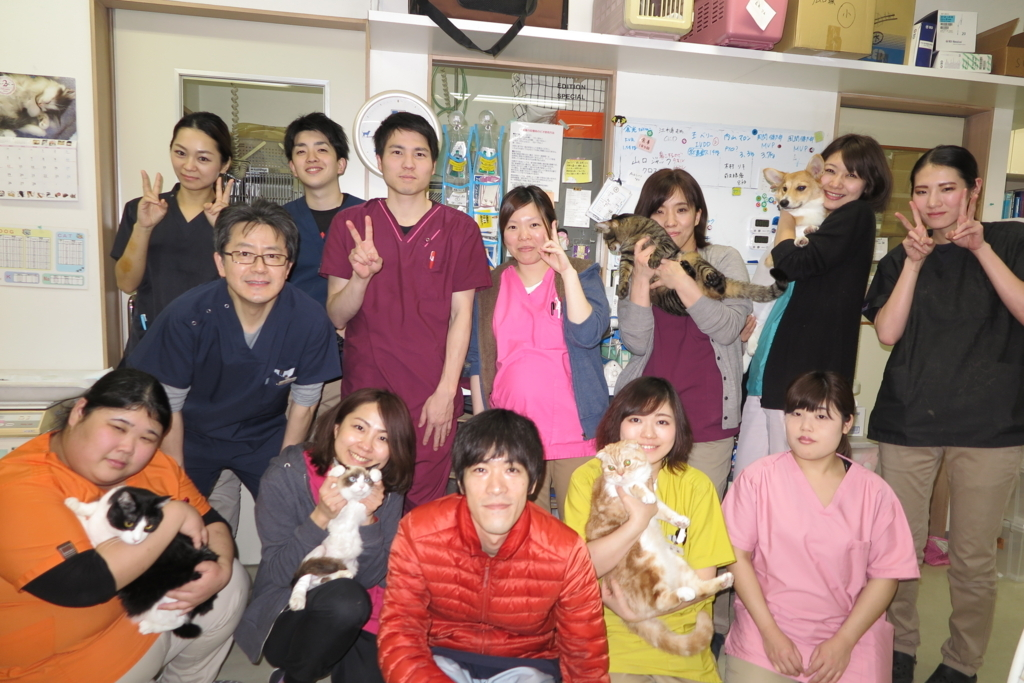 f:id:mitsuhiro-yoshida:20180305232159j:plain