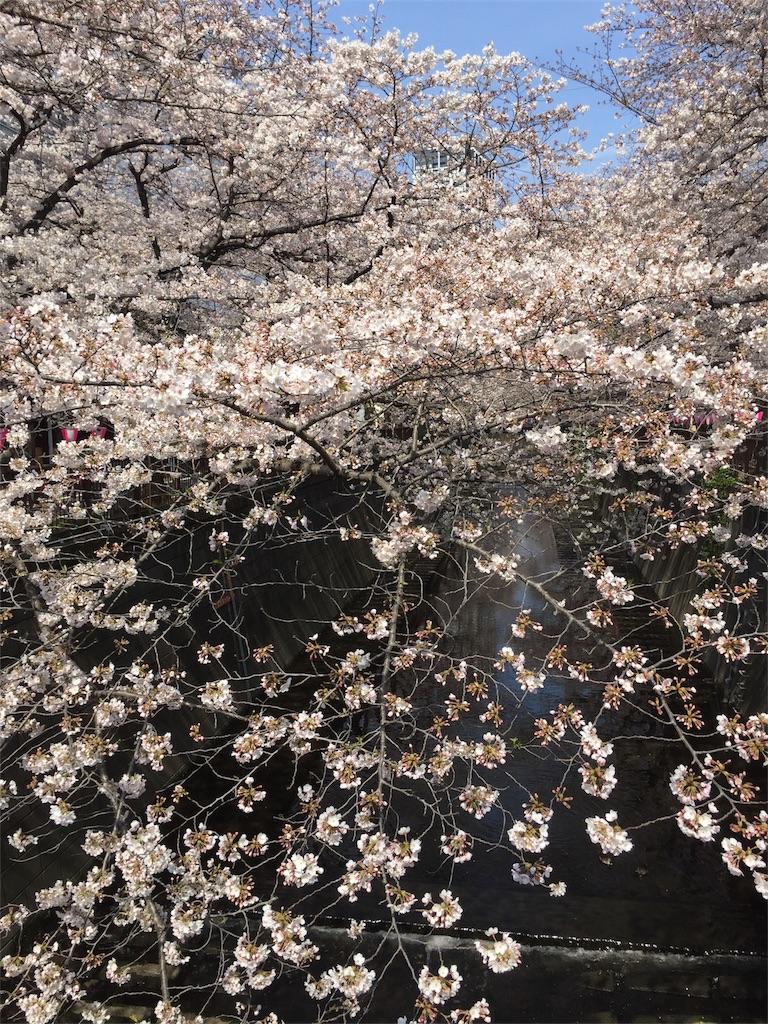 f:id:mitsuki:20170405134356j:image