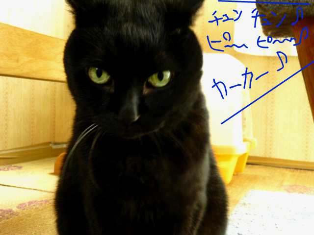 f:id:mitsuko26:20141021101251j:plain