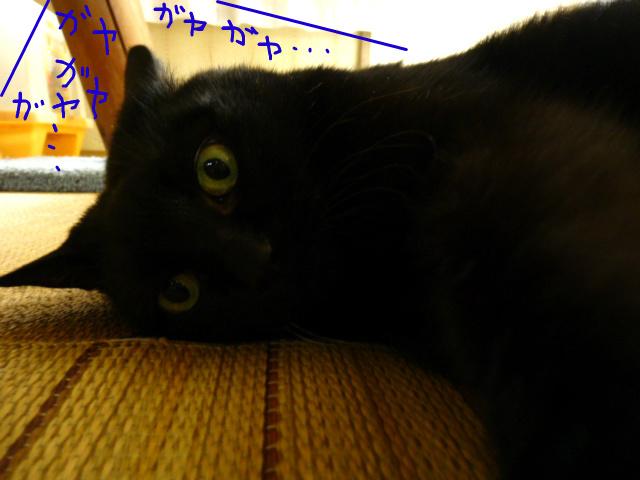 f:id:mitsuko26:20141021101536j:plain