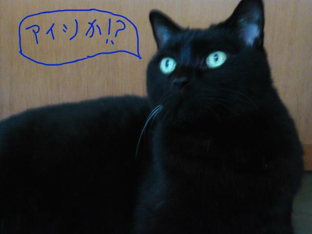 f:id:mitsuko26:20141024123228j:plain
