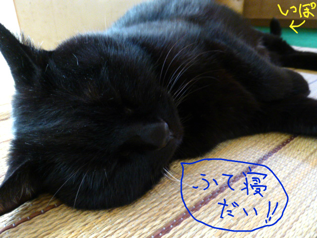 f:id:mitsuko26:20141024130517j:plain