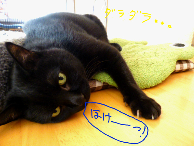 f:id:mitsuko26:20141030102935j:plain