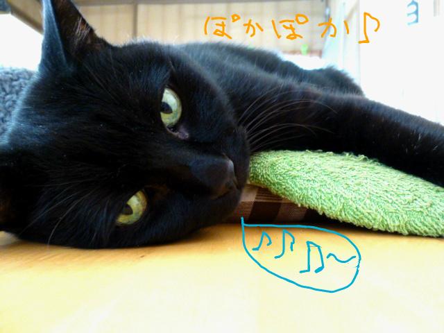 f:id:mitsuko26:20141030103000j:plain