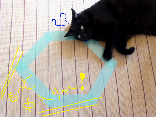 f:id:mitsuko26:20141103135840j:plain