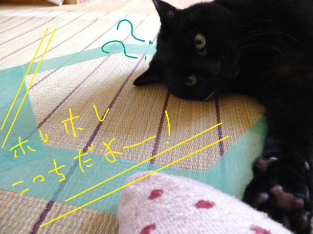 f:id:mitsuko26:20141103140010j:plain