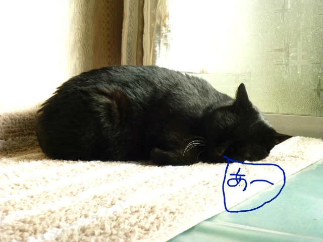f:id:mitsuko26:20141202141412j:plain