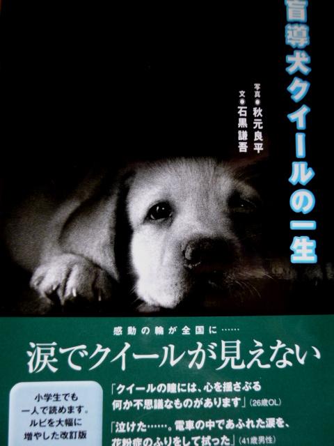 f:id:mitsuko26:20170115114858j:plain