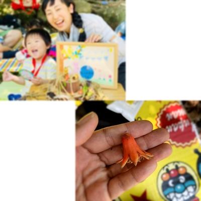 f:id:mitsukuro3:20200622175026j:plain