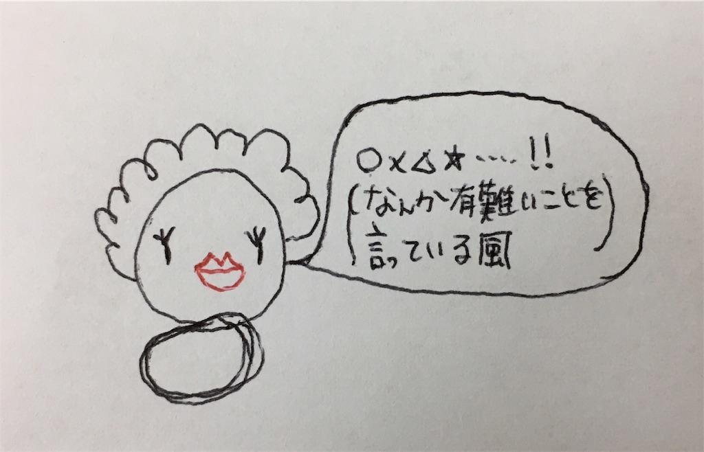 f:id:mitsumari_blog:20170818162935j:image