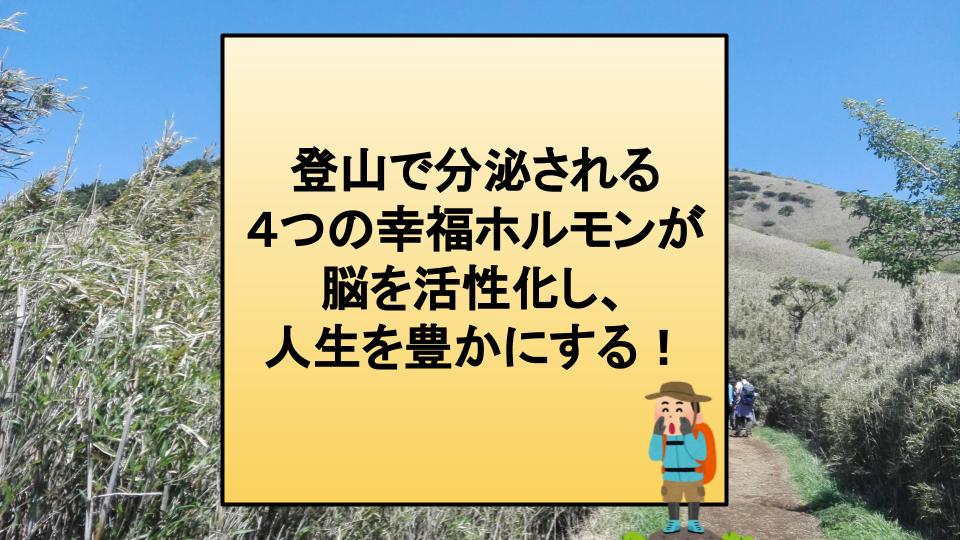 f:id:mitsuo716:20200728220008p:plain