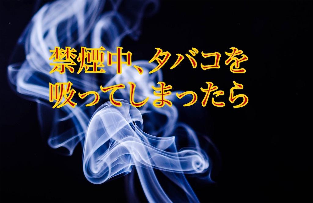 f:id:mitsuru-inte-r:20191029062309j:image
