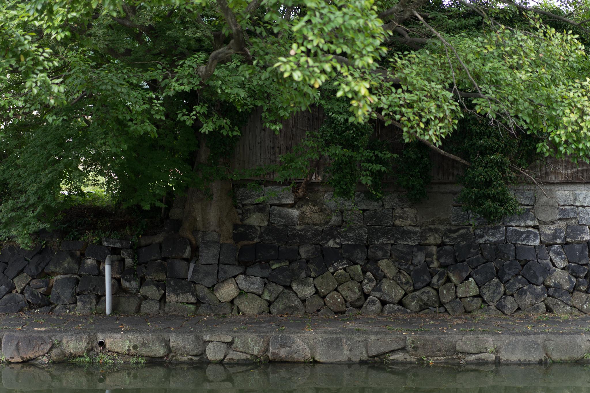 f:id:mitsuya0:20161115005848j:plain