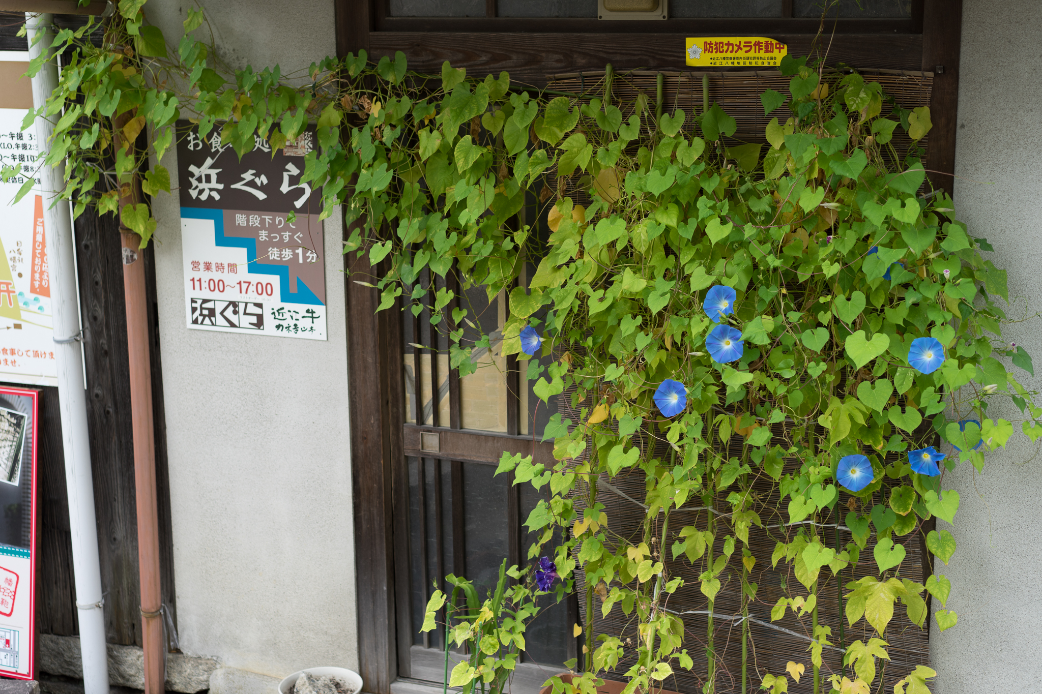 f:id:mitsuya0:20161115005915j:plain