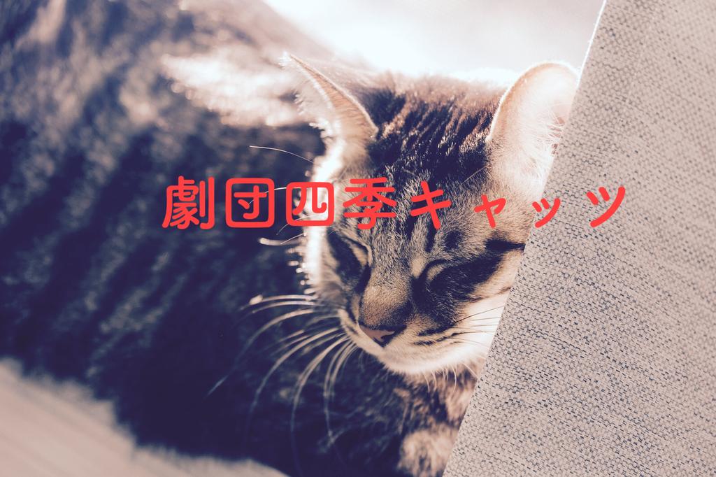 f:id:miu-moon-miu62:20180912094020j:plain