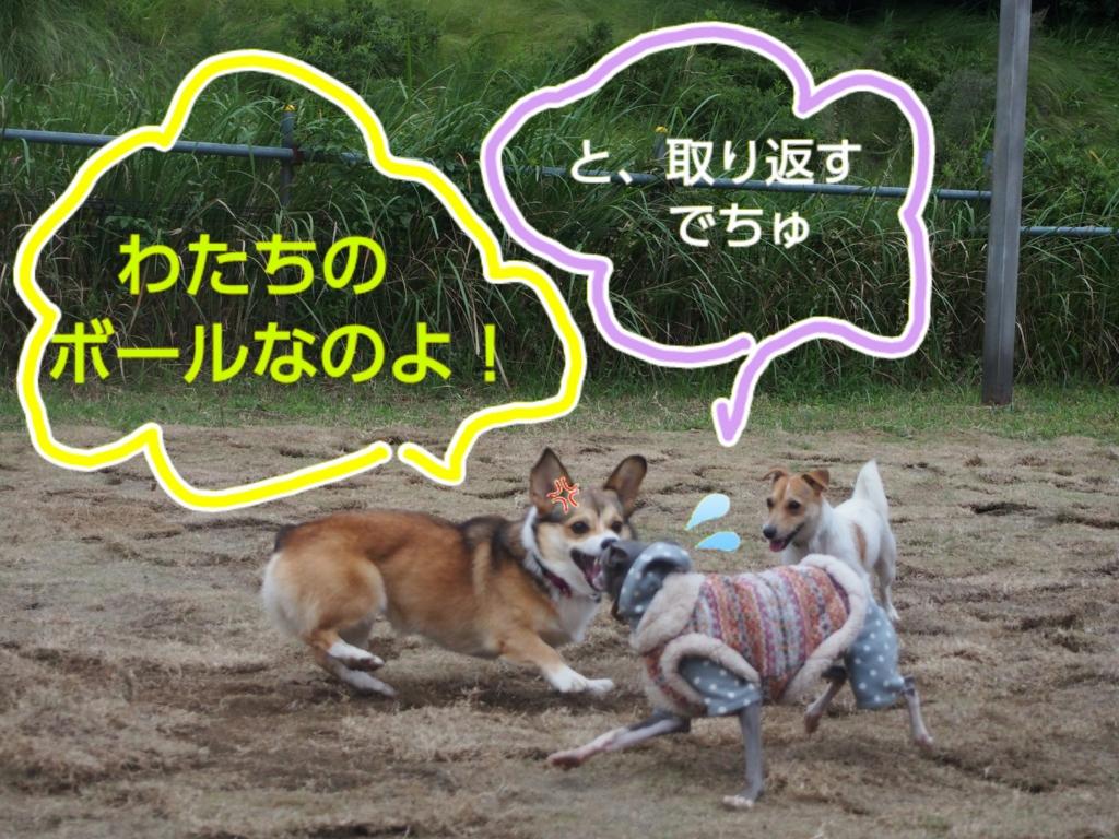 f:id:mivamaro:20161014090046j:plain