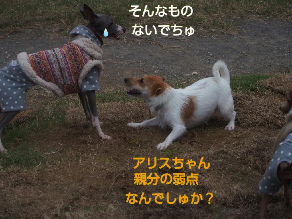 f:id:mivamaro:20161014090123j:plain