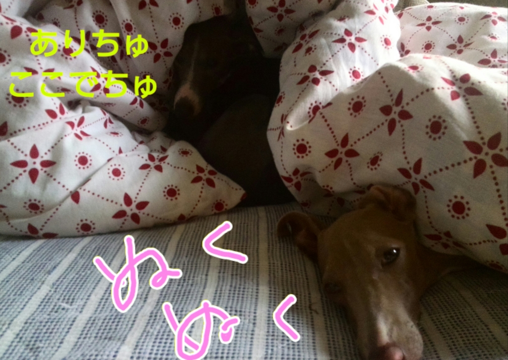 f:id:mivamaro:20161021114325j:plain