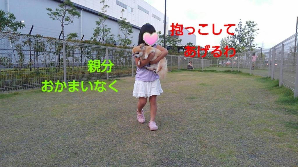 f:id:mivamaro:20170725165845j:plain
