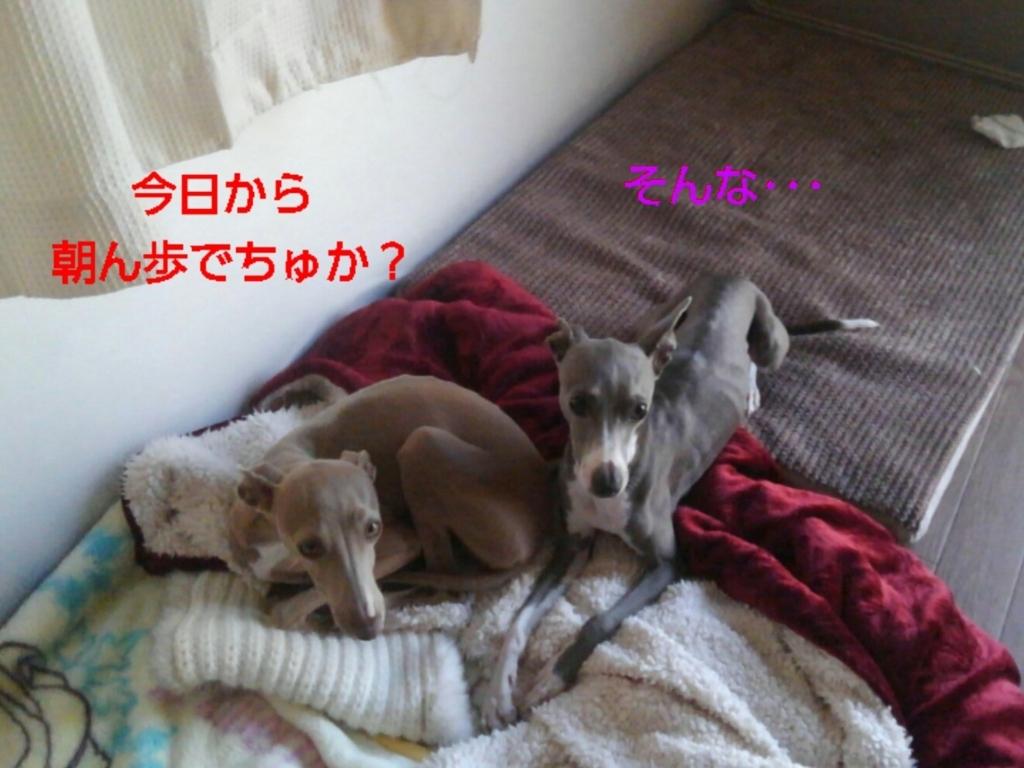 f:id:mivamaro:20180325090957j:plain