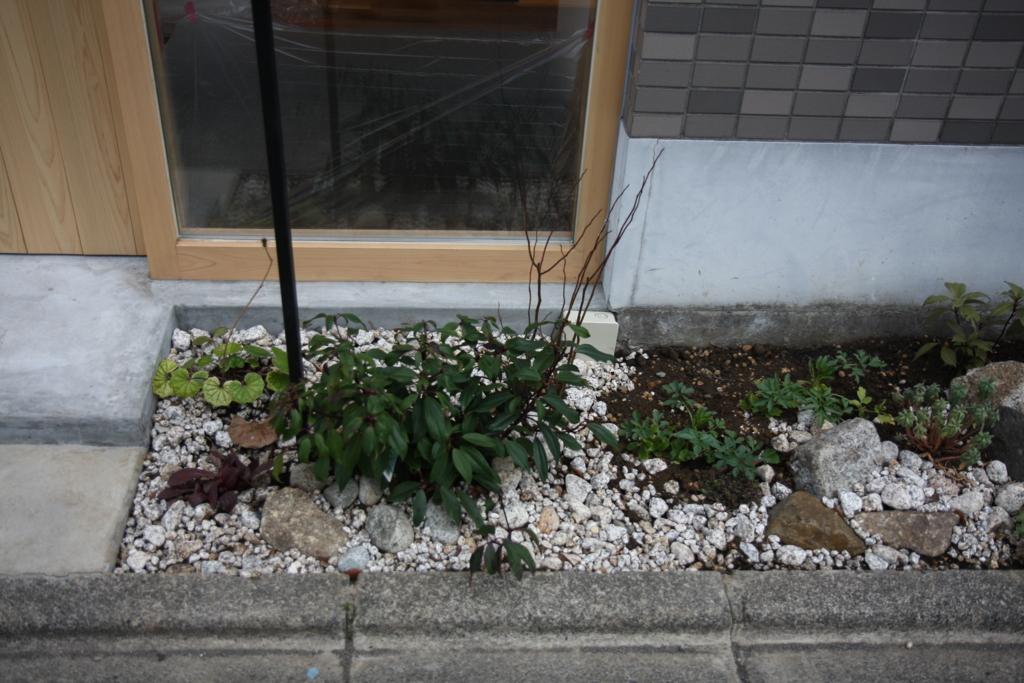 f:id:miwa-planted:20170219160646j:plain