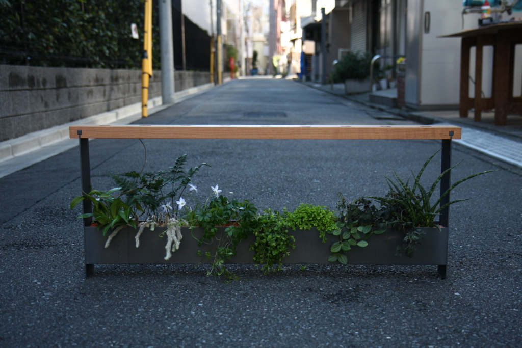 f:id:miwa-planted:20170304220525j:plain