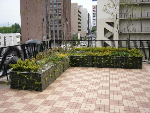 f:id:miwa-planted:20180106004701j:plain
