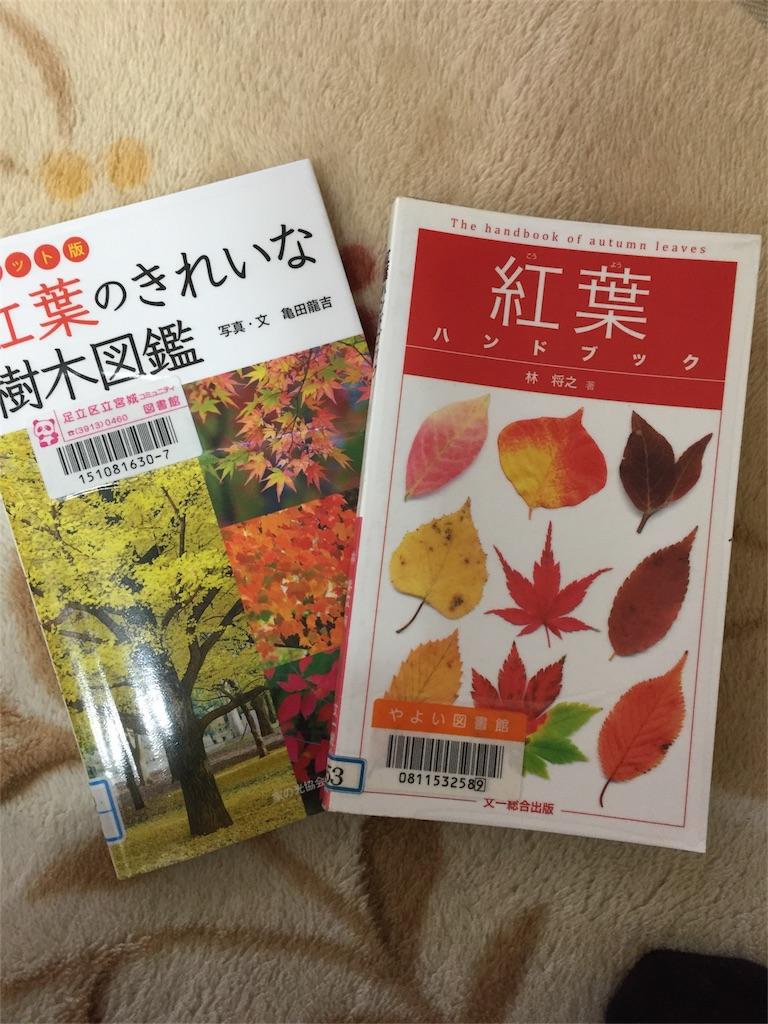 f:id:miwa36921:20161126073733j:image