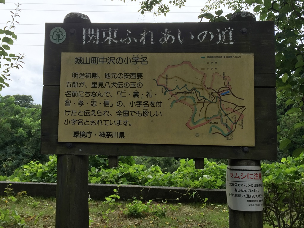 f:id:miwa3k:20161006141312j:plain