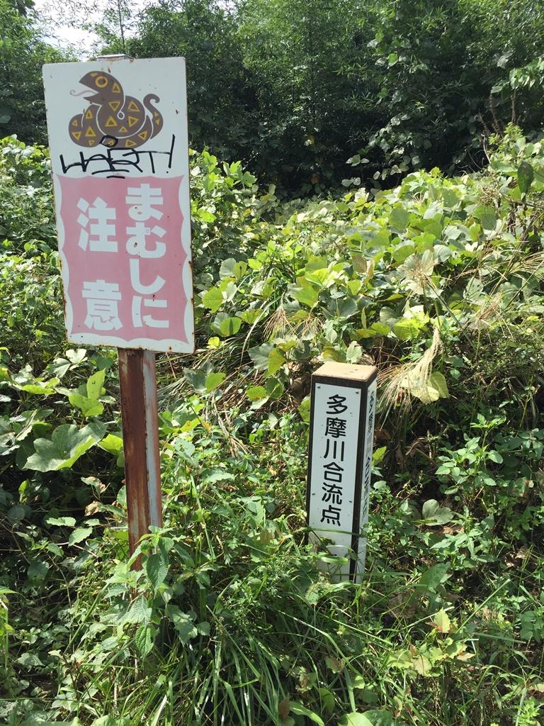 f:id:miwa3k:20161019211946j:plain