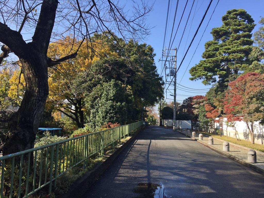 f:id:miwa3k:20161201123931j:plain