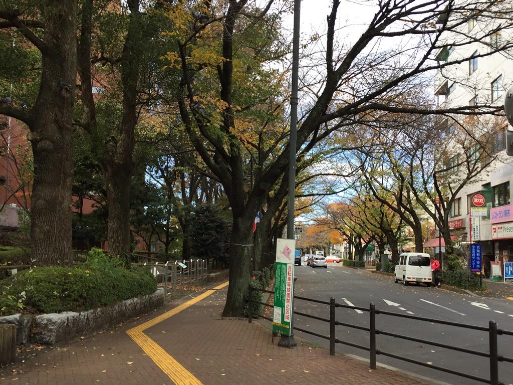 f:id:miwa3k:20161205192816j:plain