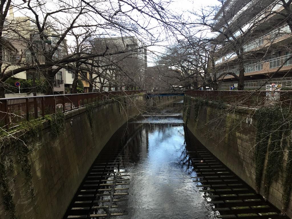 f:id:miwa3k:20170210195418j:plain