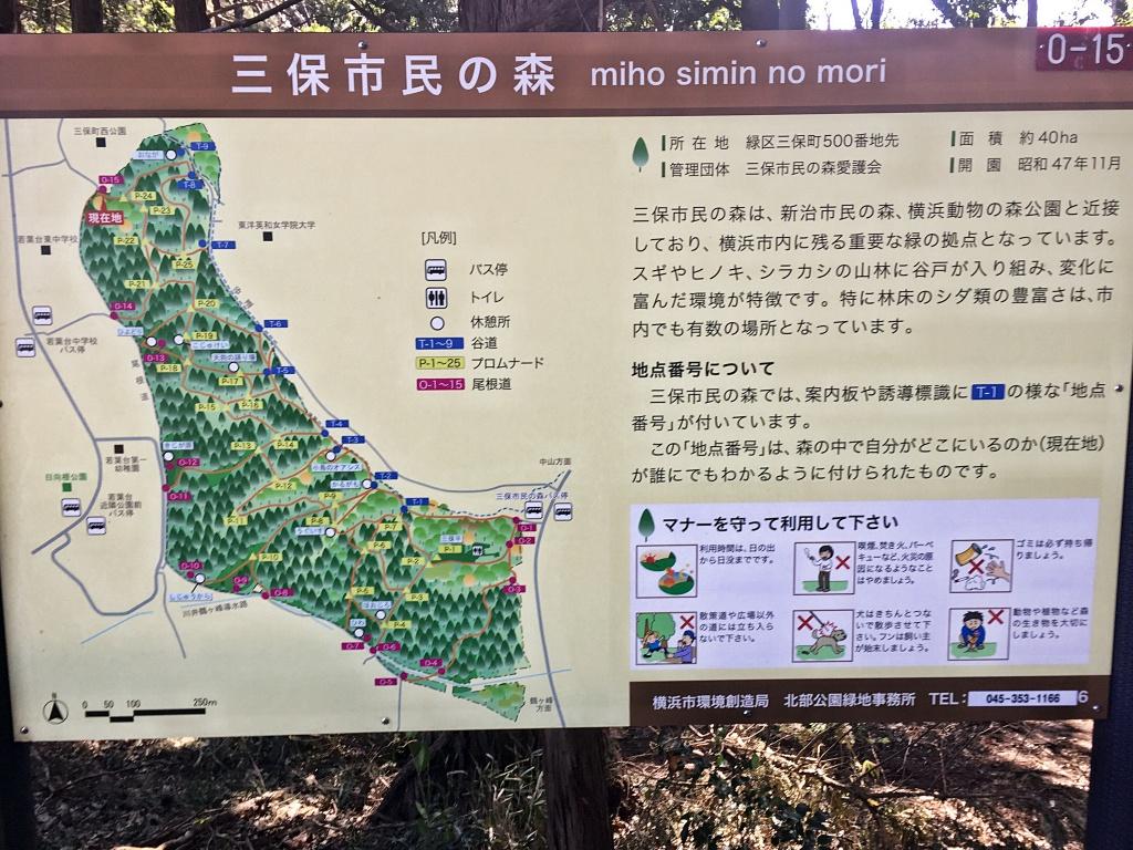 f:id:miwa3k:20170327200258j:plain