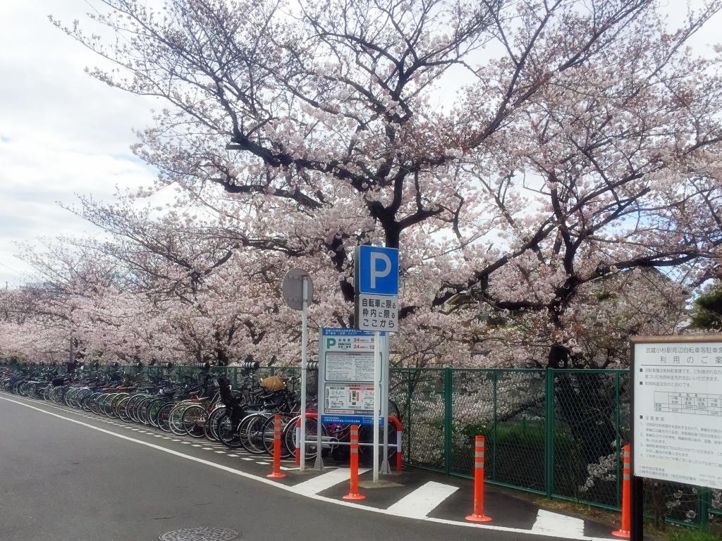 f:id:miwa3k:20170417114121j:plain