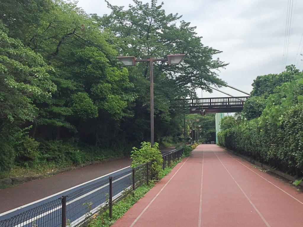 f:id:miwa3k:20170802130138j:plain