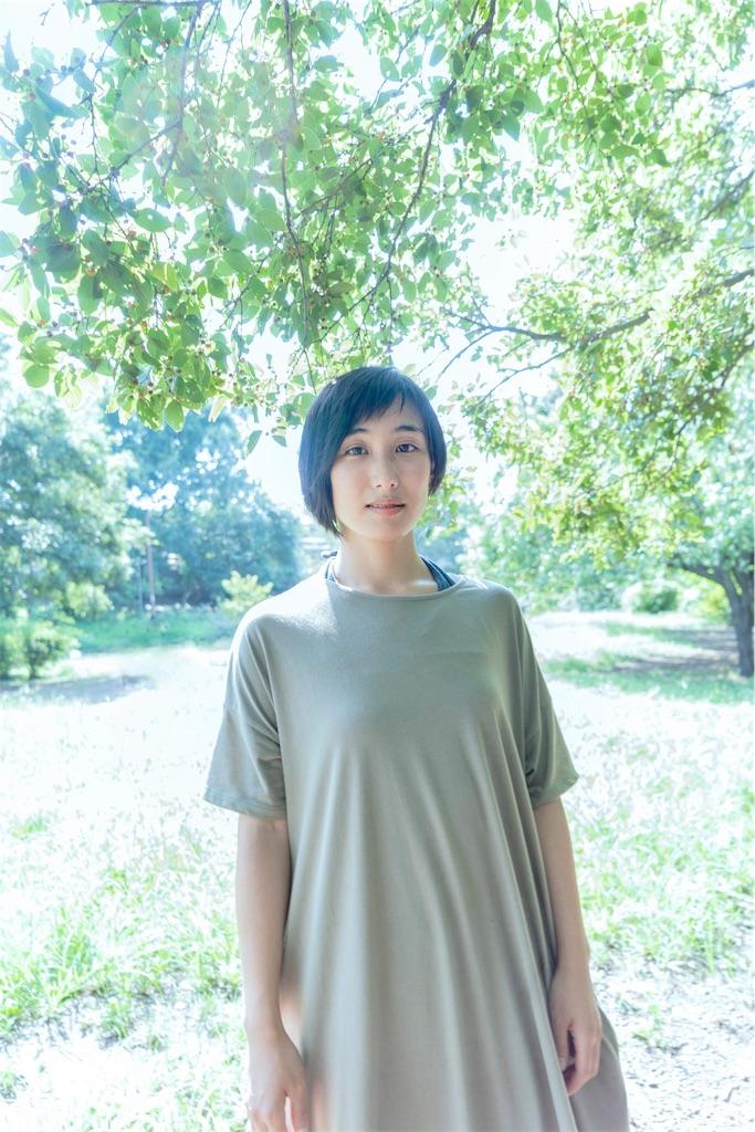 f:id:miwadesu:20180820150442j:image