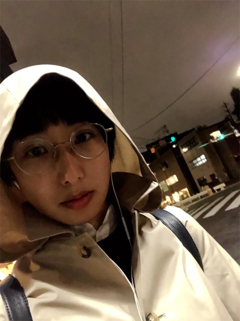 f:id:miwadesu:20181111004605j:image