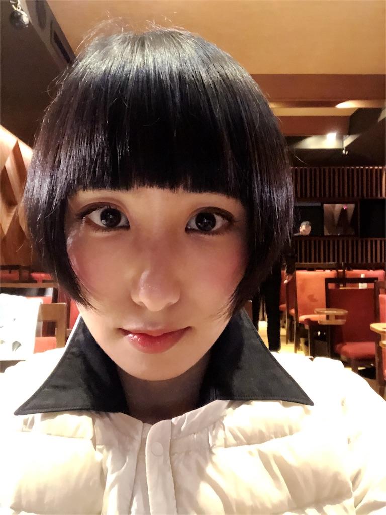 f:id:miwadesu:20190322165050j:image