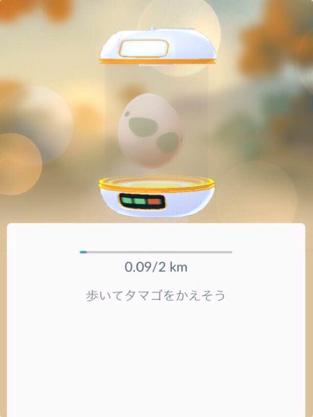 f:id:miwako-amano:20160726023918j:plain