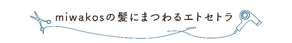 f:id:miwakos:20161211005618p:plain