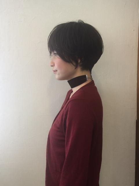 f:id:miwakos:20170111210153j:plain