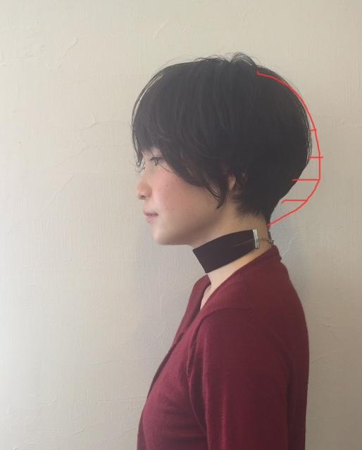 f:id:miwakos:20170111211434j:plain